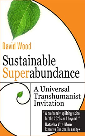Podcast #29: Sustainable Superabundance with David Wood
